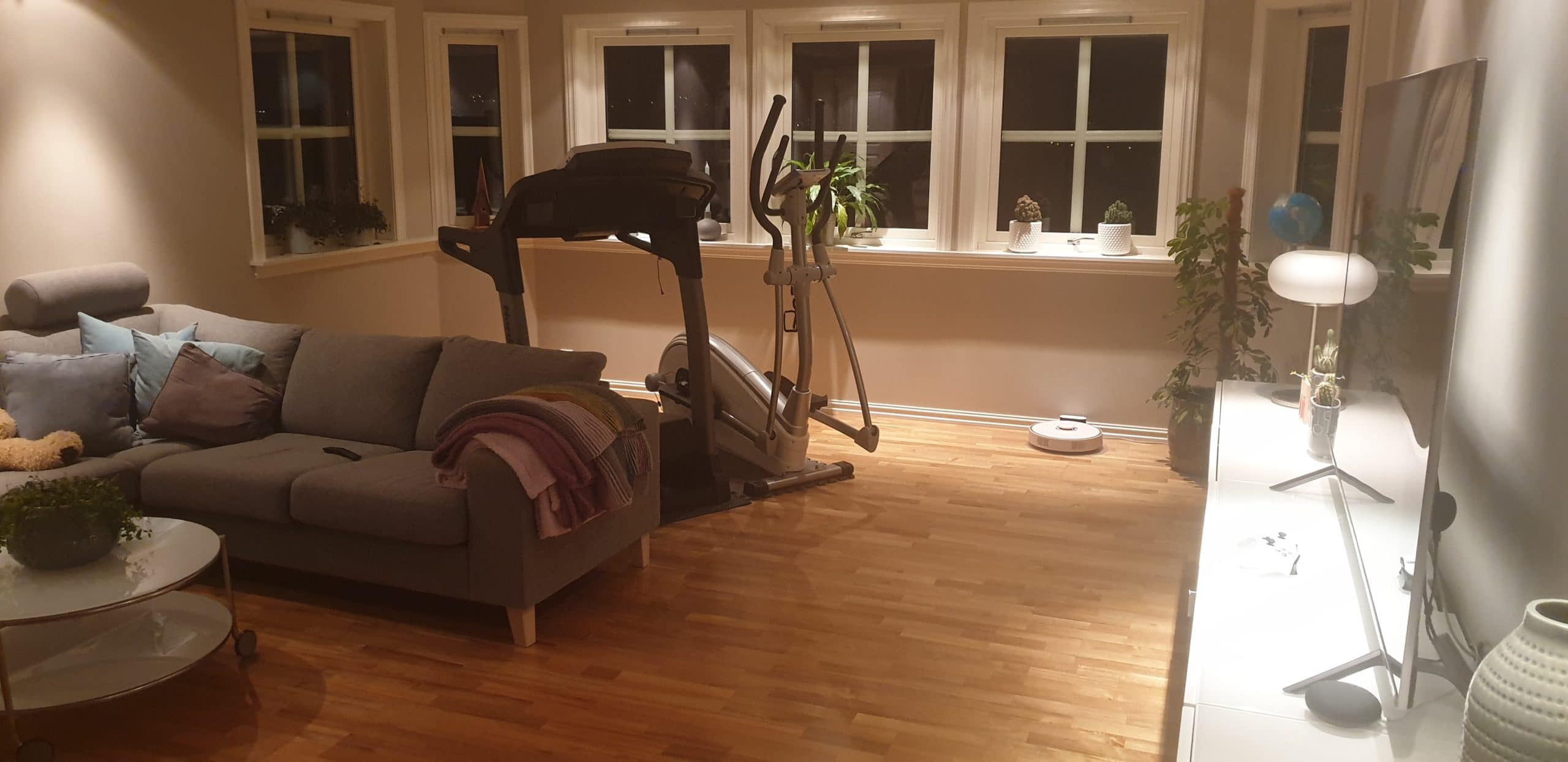Downstairs gym